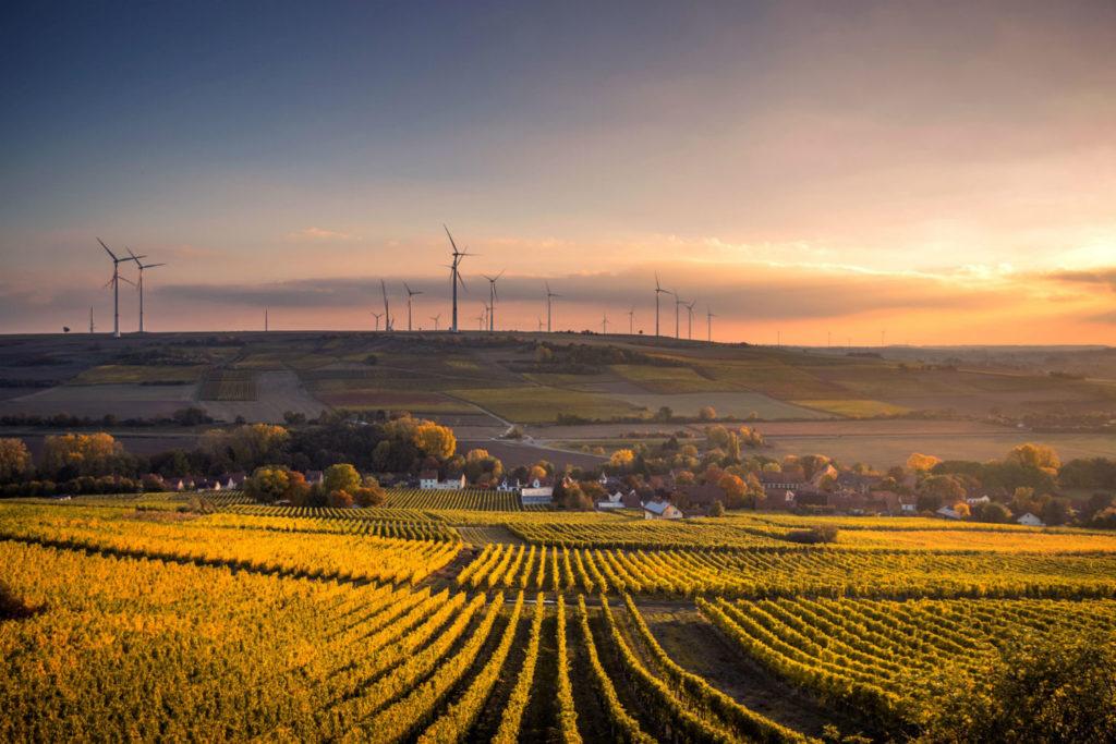 campo prodotti agricoli e pale eoliche