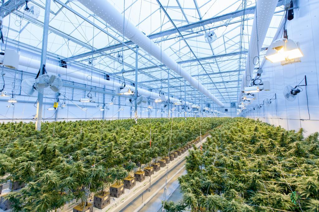 Industria 4.0 e agricoltura