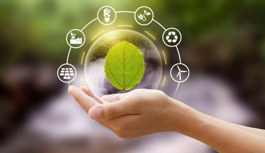 Il ruolo della filiera agroalimentare nella Bioeconomia Circolare