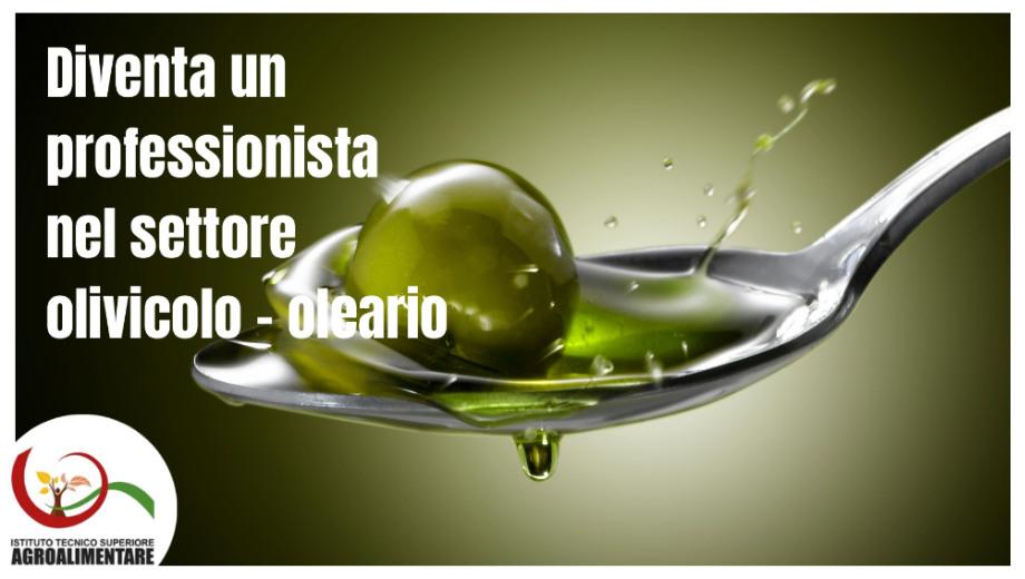 Corso Evologo – Responsabile delle produzioni e delle trasformazioni agrarie, agroalimentari e agroindustriali con specializzazione nel settore olivicolo-oleario